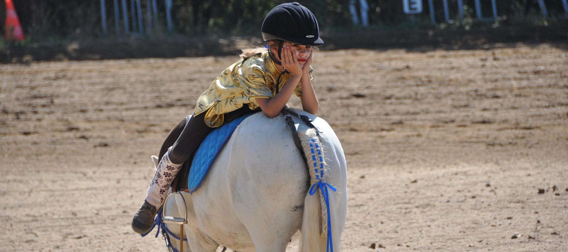 horse-1920x854